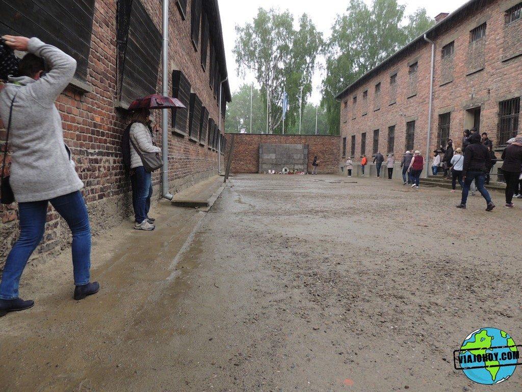 Visita-Auschwitz-viajohoy144