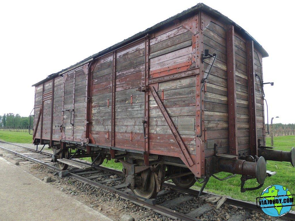 Visita-Auschwitz-viajohoy207