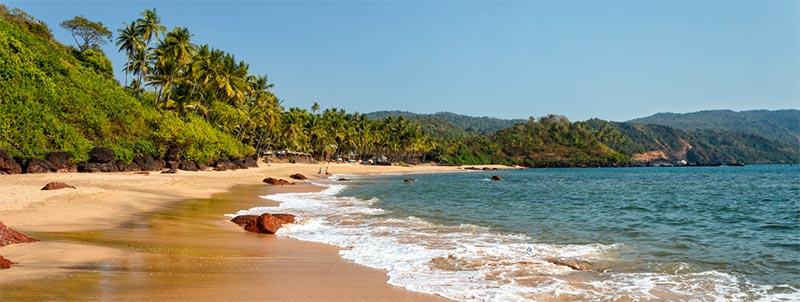La India y su Playa Solitaria, Agonda